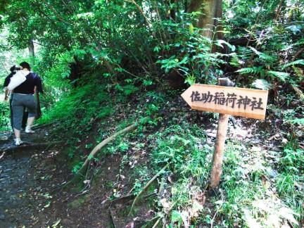 大仏ハイキングコース